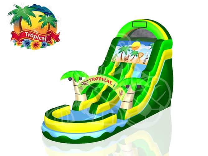 Tropical Slide - Pic 3